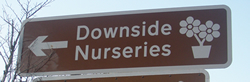 Downside Nursery Sign