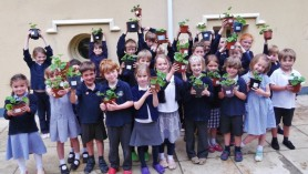 Back to School for Budding Green Fingers