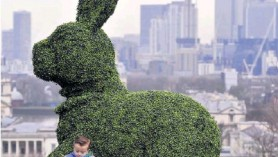 An example of topiary - perhaps not quite what we have at Downside Nurseries